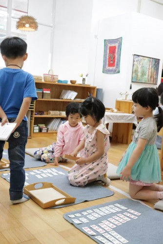 Montessori Summer Program (3 -6 years)